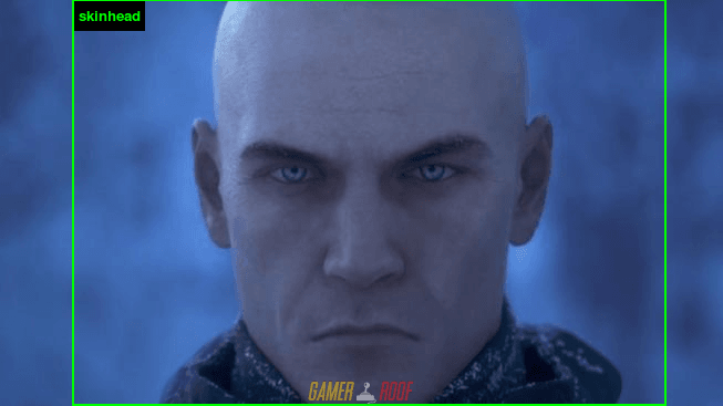 Agent 47 - Skinhead